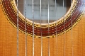 Eight String Carmanah Guitar: Rosette