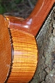 Eight String Carmanah Guitar: Side and Heel