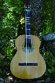 Flamenco Guitar: Flamenco Guitar front view