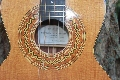 Steel String Guitar: Steel String Rosette view.